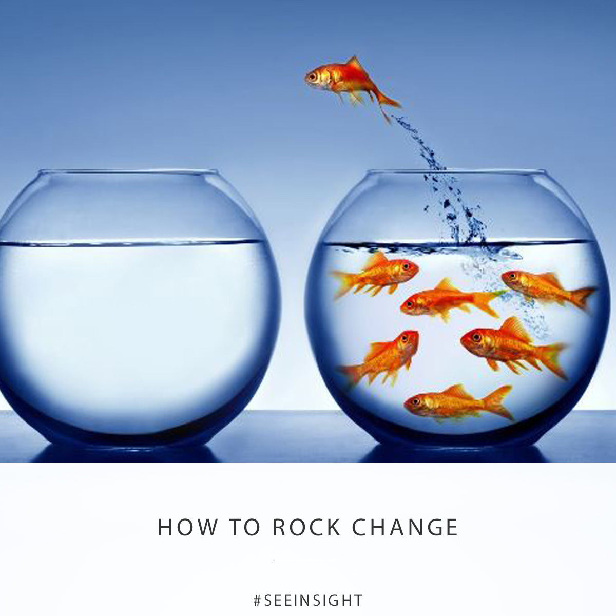 How to Rock Change