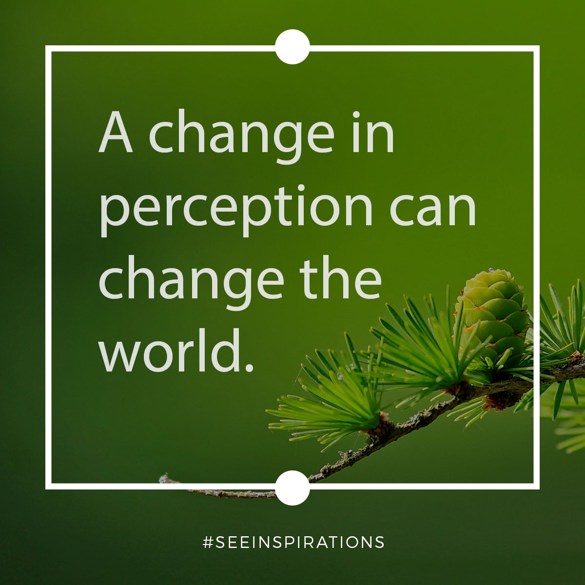 A change in perception can change the world.