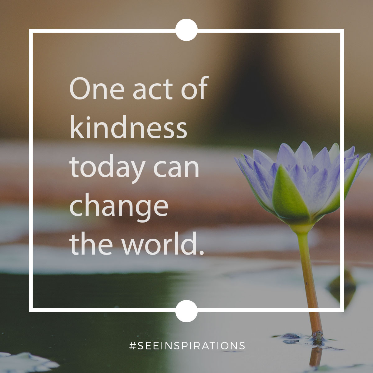 One act of kindess today can change the world.