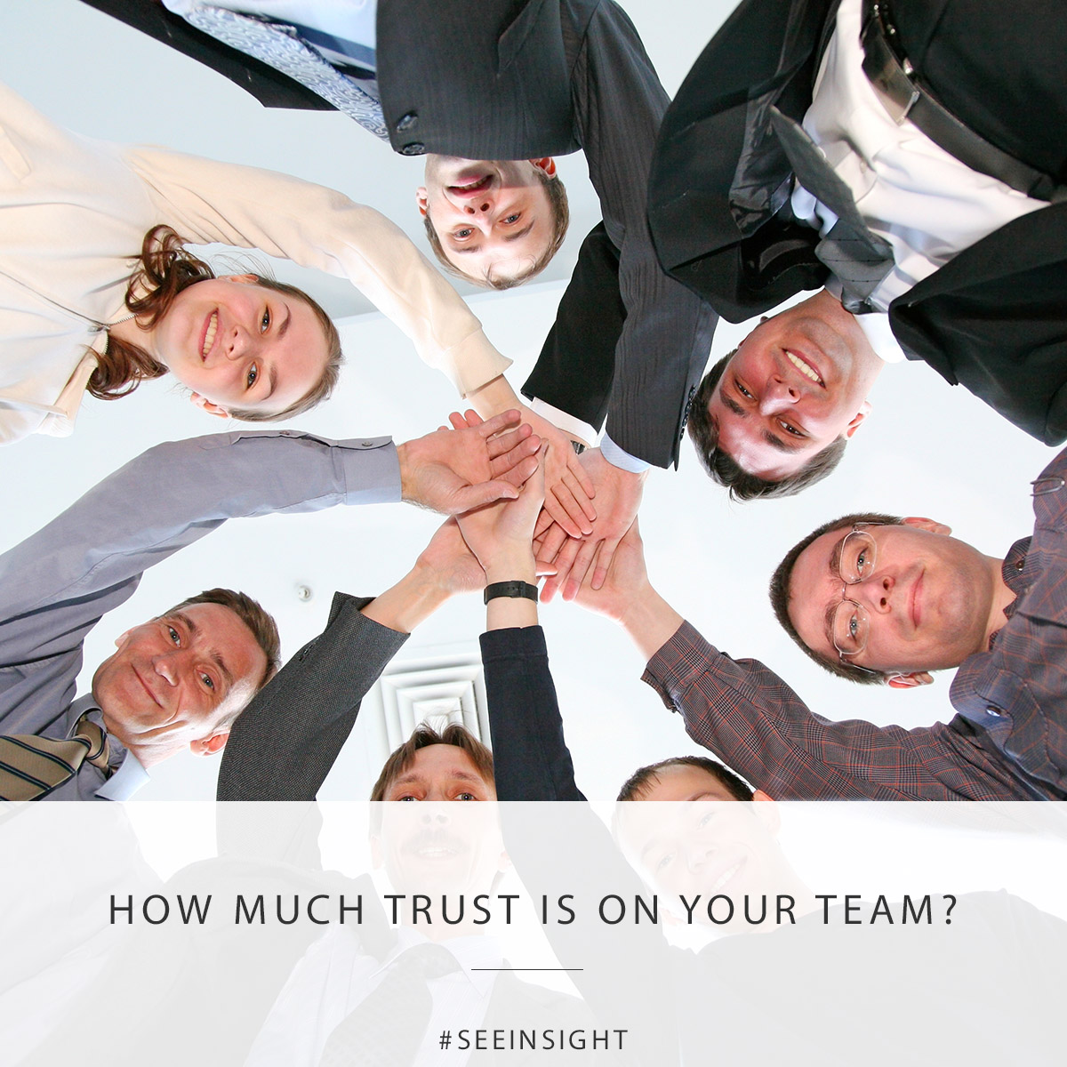 How Much Trust is on Your Team?